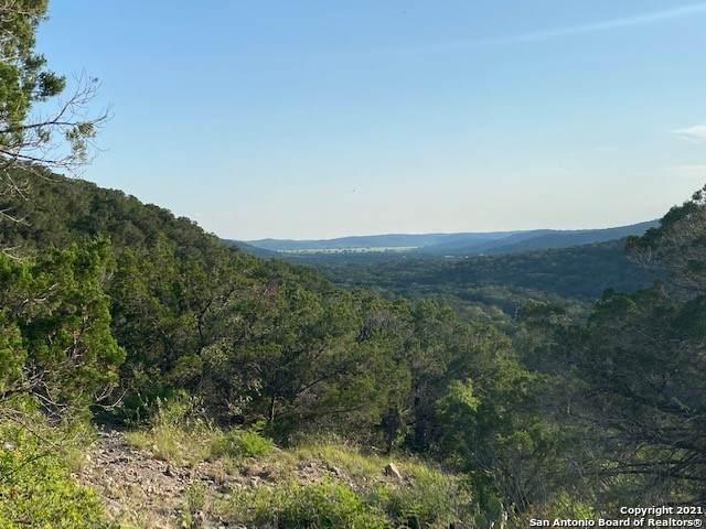 800 Brushy Creek Ranch Rd, ConCan, TX 78838 (MLS #1538833) :: Bexar Team