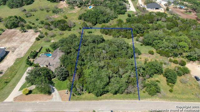 210 Falling Hills, New Braunfels, TX 78132 (MLS #1538956) :: The Lopez Group