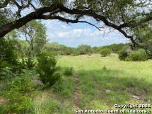 318 Upland Ct, Spring Branch, TX 78070 (MLS #1539086) :: 2Halls Property Team | Berkshire Hathaway HomeServices PenFed Realty