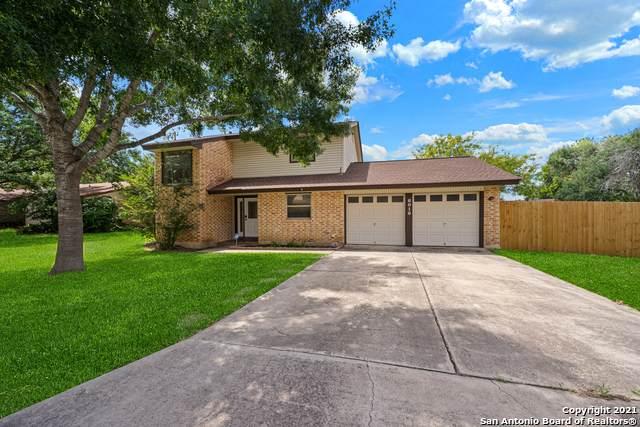 6010 Royal Wood, San Antonio, TX 78239 (MLS #1539143) :: 2Halls Property Team | Berkshire Hathaway HomeServices PenFed Realty