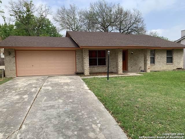 6807 Burnley, San Antonio, TX 78239 (MLS #1539181) :: The Rise Property Group