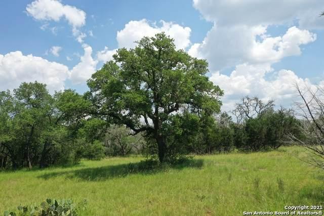 LOT 547 Palomino Springs, Bandera, TX 78003 (MLS #1539206) :: Sheri Bailey Realtor