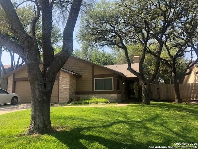 6127 Fox Creek St, San Antonio, TX 78247 (#1539238) :: The Perry Henderson Group at Berkshire Hathaway Texas Realty