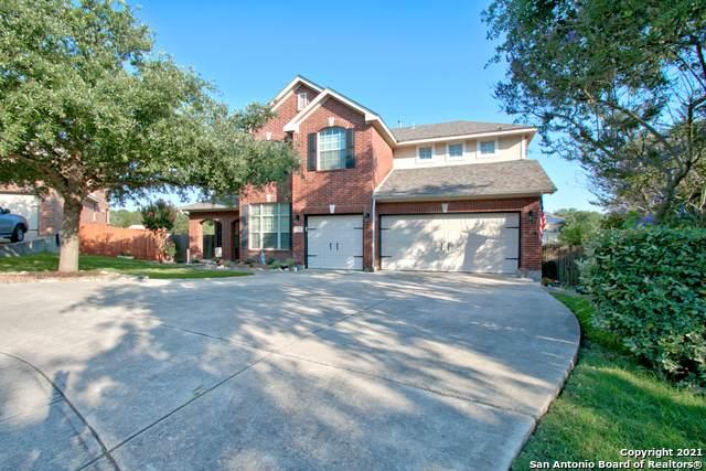 1435 Mesa Hollow, San Antonio, TX 78258 (#1539239) :: The Perry Henderson Group at Berkshire Hathaway Texas Realty