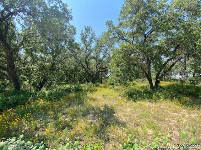338 County Road 6874, Natalia, TX 78059 (MLS #1539278) :: Sheri Bailey Realtor