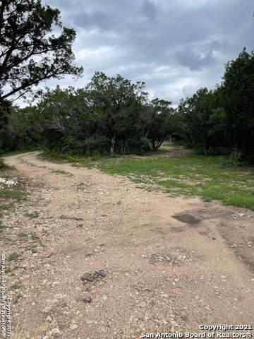 1736 County Road 270, Mico, TX 78056 (MLS #1539391) :: Sheri Bailey Realtor