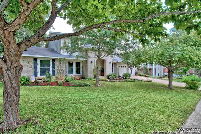 18010 Shady Knoll, San Antonio, TX 78258 (MLS #1539525) :: Vivid Realty