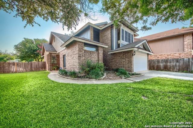3211 Rosetti Dr, San Antonio, TX 78247 (MLS #1539547) :: Beth Ann Falcon Real Estate