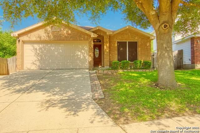 811 Cub Path, San Antonio, TX 78251 (MLS #1539569) :: Beth Ann Falcon Real Estate