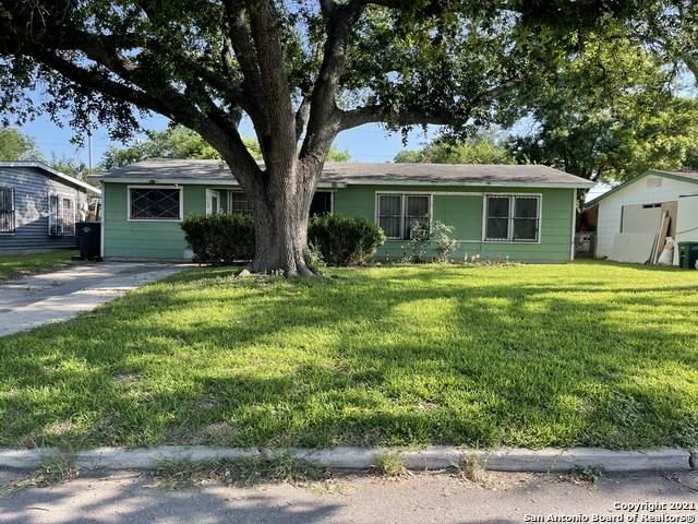 259 Coney St, San Antonio, TX 78223 (MLS #1539604) :: The Heyl Group at Keller Williams