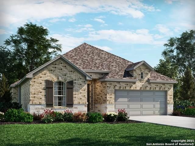 24306 Palermo Way, San Antonio, TX 78261 (MLS #1539740) :: Alexis Weigand Real Estate Group