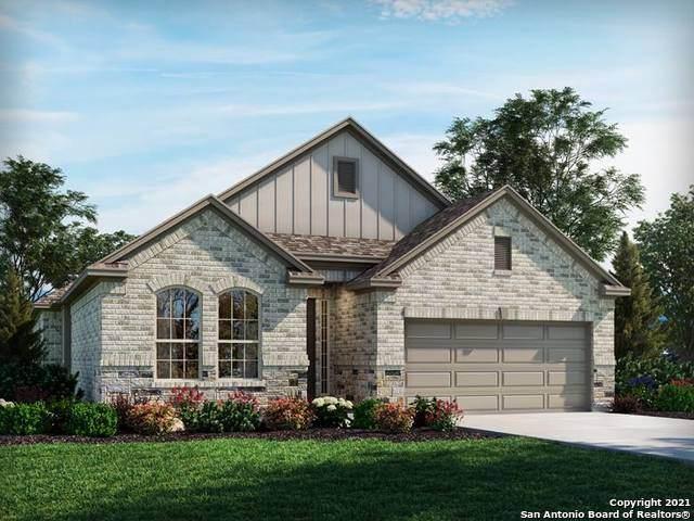 24313 Palermo Way, San Antonio, TX 78261 (MLS #1539742) :: Alexis Weigand Real Estate Group