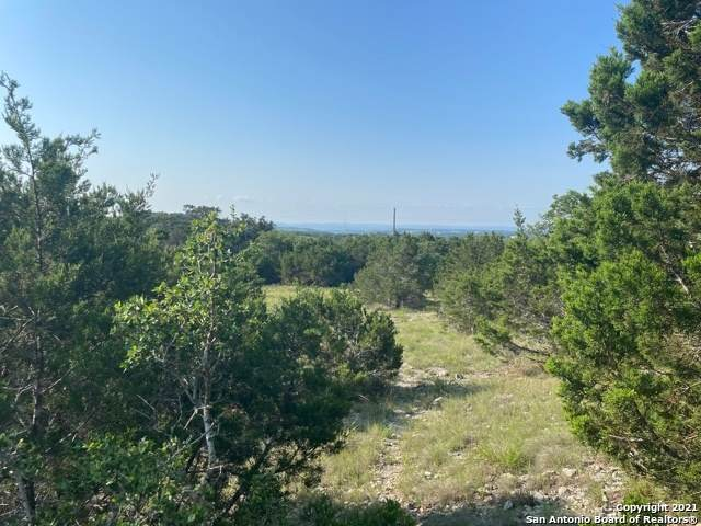 521 (LOT 1843) Abodar Trail, Spring Branch, TX 78070 (MLS #1539787) :: 2Halls Property Team | Berkshire Hathaway HomeServices PenFed Realty