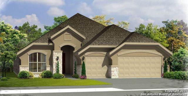 1165 Hammock Glen, New Braunfels, TX 78132 (MLS #1539872) :: Alexis Weigand Real Estate Group