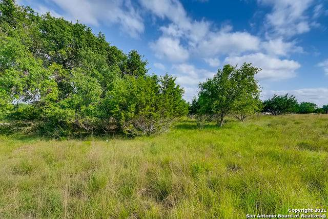 LOT 834 Junius Peak, Blanco, TX 78606 (MLS #1539915) :: Concierge Realty of SA
