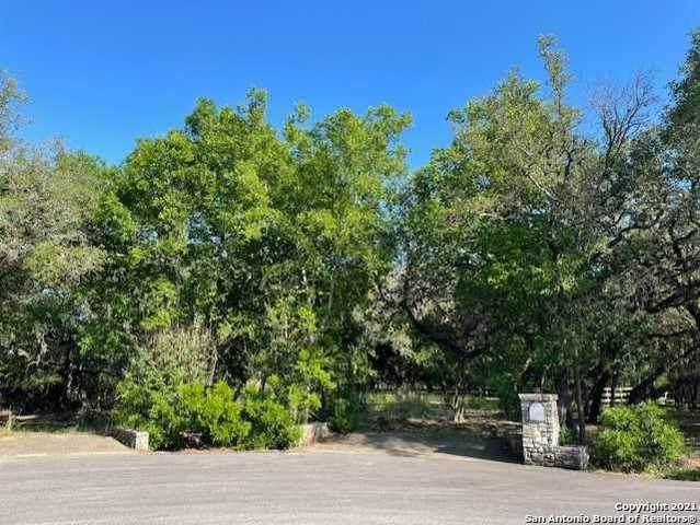 26026 Goldfinch Trail, San Antonio, TX 78255 (MLS #1539918) :: Neal & Neal Team