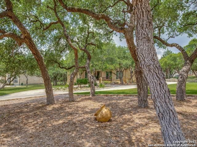 1176 S Glenwood Loop, Bulverde, TX 78163 (MLS #1539980) :: Vivid Realty