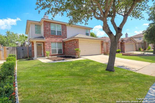 4114 Bear Oak Path, San Antonio, TX 78223 (MLS #1539988) :: The Gradiz Group