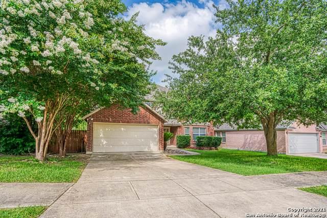 129 Springtree Pkwy, Cibolo, TX 78108 (MLS #1540002) :: The Castillo Group