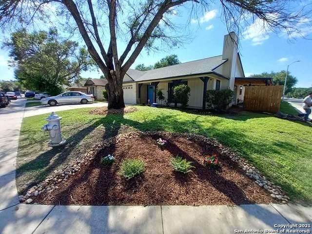 11403 Fort Wyne Dr, San Antonio, TX 78245 (MLS #1540019) :: Beth Ann Falcon Real Estate