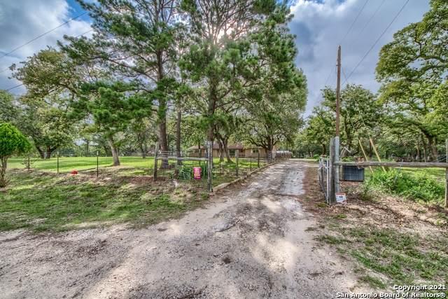 537 Springwood Ln, Adkins, TX 78101 (MLS #1540054) :: Exquisite Properties, LLC