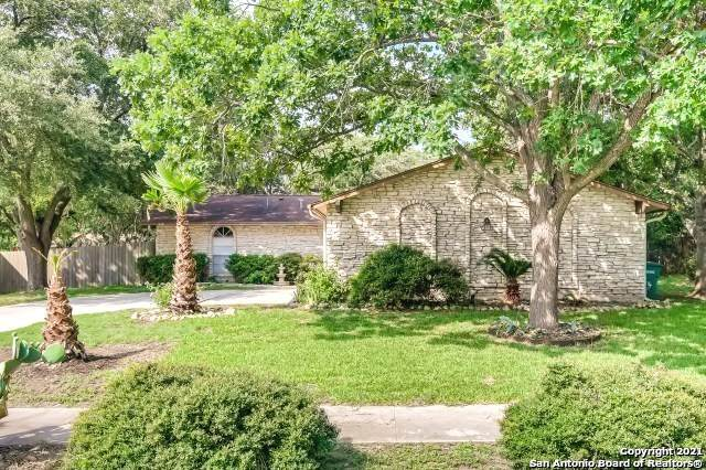 4906 Sierra Madre Dr, San Antonio, TX 78233 (MLS #1540163) :: Beth Ann Falcon Real Estate