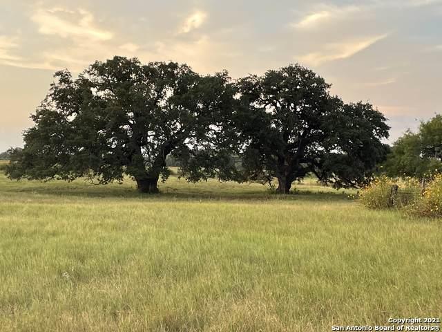 2463 County Road 342, La Vernia, TX 78121 (MLS #1540408) :: Concierge Realty of SA