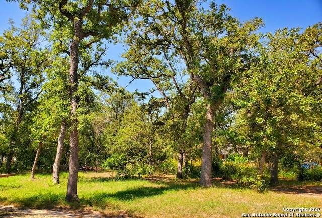 179 Hickory Hill Dr, La Vernia, TX 78121 (MLS #1540409) :: ForSaleSanAntonioHomes.com