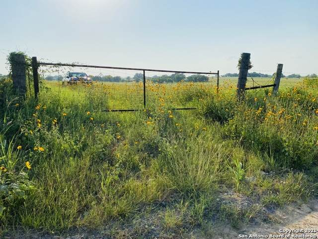 0 Cr 2863, Bigfoot, TX 78005 (MLS #1540428) :: Williams Realty & Ranches, LLC