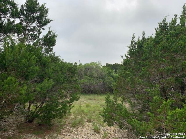 150 Willie Ct, Canyon Lake, TX 78133 (MLS #1540493) :: The Lopez Group