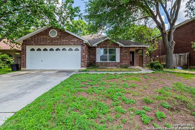 9931 Fall Harvest, San Antonio, TX 78254 (MLS #1540551) :: REsource Realty