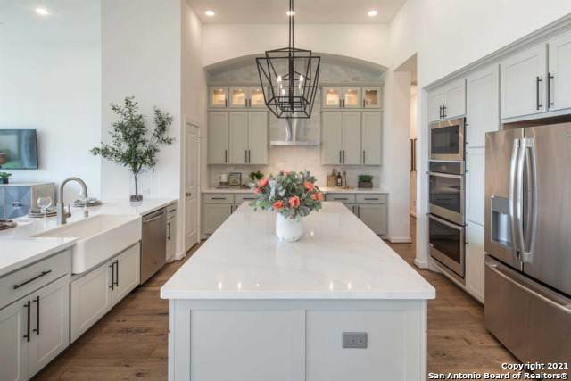130 Newcourt Place, Boerne, TX 78006 (MLS #1540553) :: Exquisite Properties, LLC