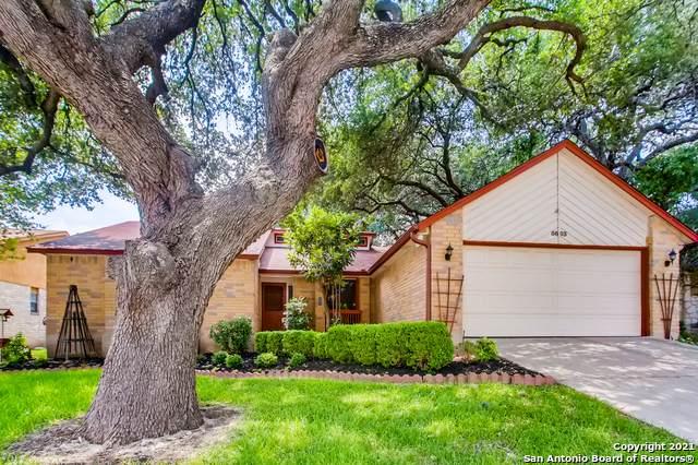 5603 Timber Shade, San Antonio, TX 78250 (MLS #1540559) :: Bexar Team