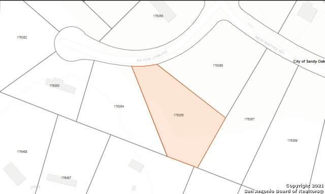 23206 Silver Chalice, Elmendorf, TX 78112 (MLS #1540579) :: Exquisite Properties, LLC
