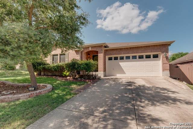 104 Springtree Clf, Cibolo, TX 78108 (MLS #1540651) :: Countdown Realty Team