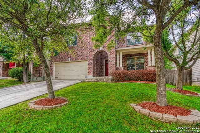 6035 Donely Pl, San Antonio, TX 78247 (MLS #1540840) :: The Lopez Group