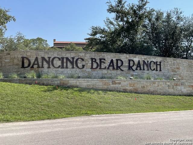 133 Private Road 1736, Mico, TX 78056 (MLS #1540946) :: EXP Realty