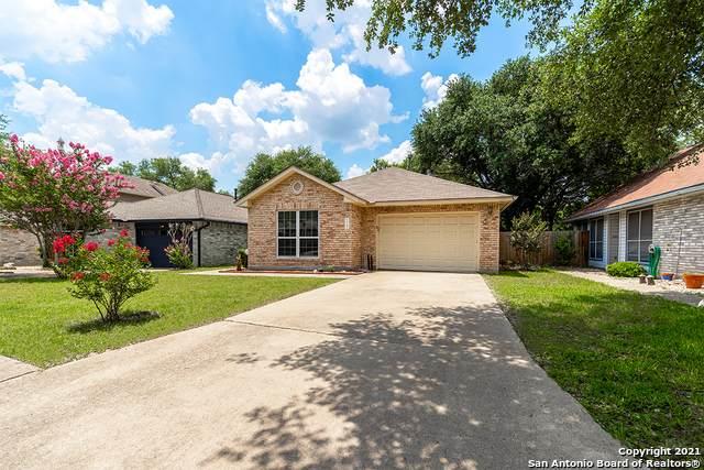 12206 Netherwood Ln, San Antonio, TX 78253 (MLS #1541097) :: EXP Realty