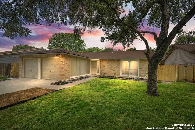 5739 Brambletree St, San Antonio, TX 78247 (MLS #1541198) :: EXP Realty