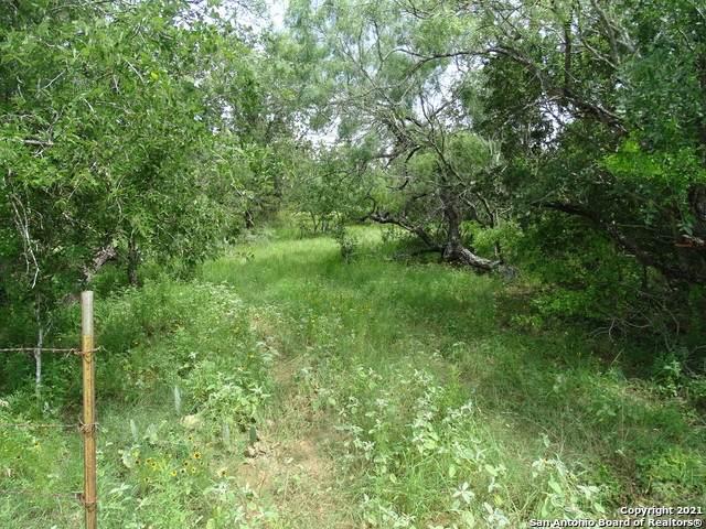 646 Cr 310, Floresville, TX 78114 (#1541205) :: Zina & Co. Real Estate