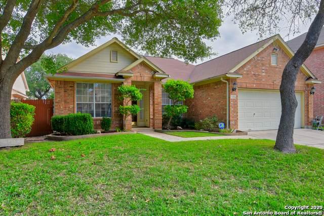 21754 Luisa, San Antonio, TX 78259 (MLS #1541206) :: EXP Realty