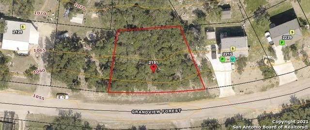 2191 Grandview Frst, Canyon Lake, TX 78133 (MLS #1541535) :: Beth Ann Falcon Real Estate