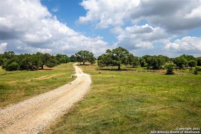 10120 W State Highway 46, New Braunfels, TX 78132 (MLS #1541591) :: Countdown Realty Team