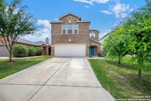1995 Shire Meadows, New Braunfels, TX 78130 (#1541694) :: Zina & Co. Real Estate