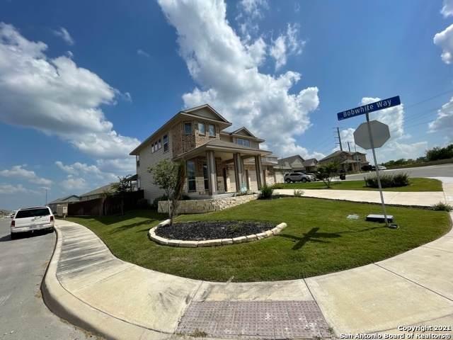 147 Hunters Rnch W, San Antonio, TX 78253 (MLS #1541759) :: The Glover Homes & Land Group