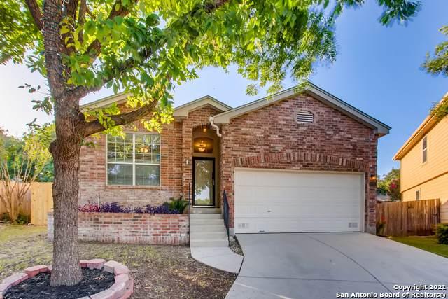 16914 Lancaster Gap, San Antonio, TX 78247 (#1541868) :: Zina & Co. Real Estate