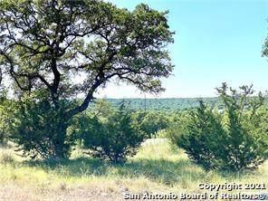 0 Tbd, Canyon Lake, TX 78133 (MLS #1541976) :: The Glover Homes & Land Group