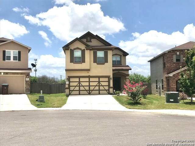 6528 Buffalo Ranch, San Antonio, TX 78244 (MLS #1542022) :: Tom White Group