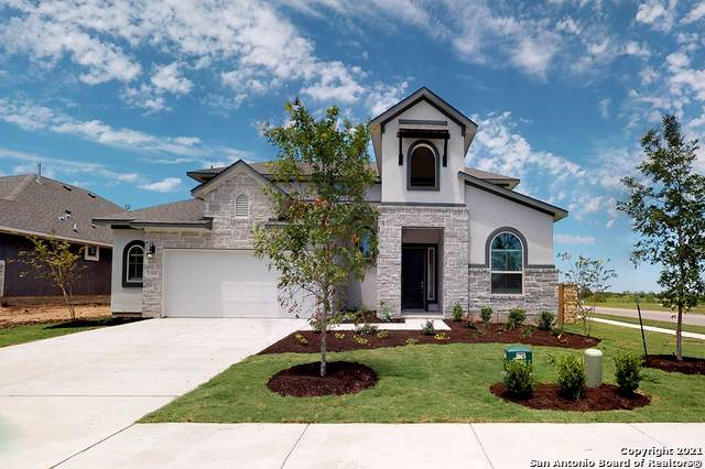 24732 Malka, San Antonio, TX 78261 (MLS #1542167) :: Tom White Group