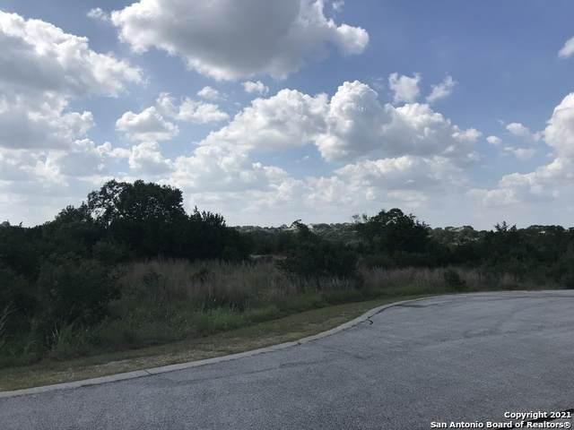 203 Swift Pl, Spring Branch, TX 78070 (MLS #1542213) :: Exquisite Properties, LLC